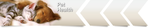 Health Supplements Category Pet Health