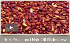Studies show that when red-yeast rice is combined with fish oil and life-style changes, the reduction in LDL-C is significant. View Slideshow.