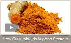 How Curcuminoids Support a Healthy Prostate