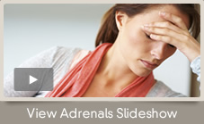Adrenals Slideshow